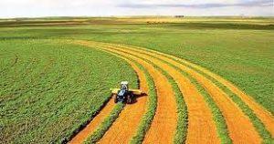 تاریخچه پیدایش کشاورزی